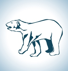 Bear drawing vector image