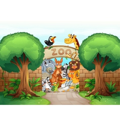a zoo and animals vector image