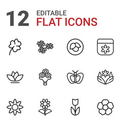 12 floral icons vector image