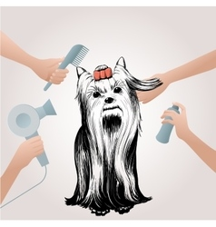 Beauty Pets Salon Concept vector image