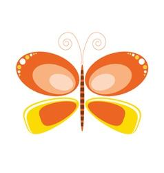 Butterfly orange art vector