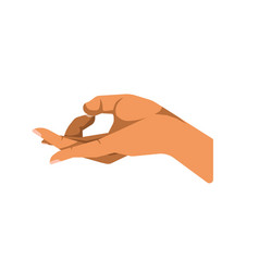 hand gesturing ok vector image