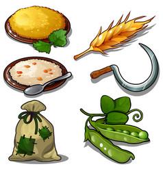Harvest set - porridge raw green peas grain sack vector