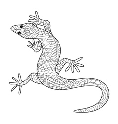 Lizard coloring book for adults vector image