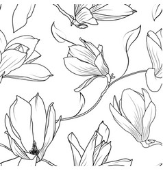 Magnolia sakura flowers branch seamless pattern vector