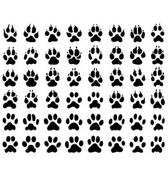 print dogs and cats paws vector image