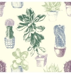 Seamless pattern with cactuses and succulents vector
