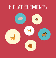 set of zoology icons flat style symbols with horse vector image