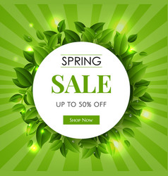 spring sale text with green branches nature vector image