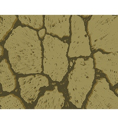 Crack texture of dry earth vector image