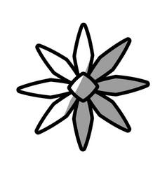 Romantic flower decoration nature vector