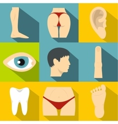 Human body icons set flat style vector image
