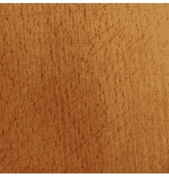 Grunge texture smooth wooden board vector image