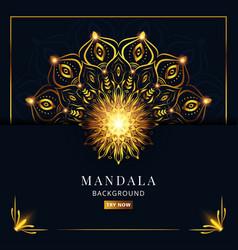 Premium luxury blue and gold mandala background vector