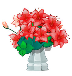 Red flowers in a vintage ceramic vase isolated vector