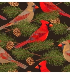 seamless cardinal and spruce vector image