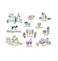 set hand drawn dairy products cheese milk vector image