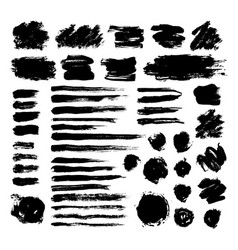 set of black ink brush strokes isolated on white vector image