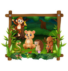 the animals meet in forest vector image