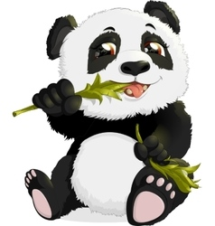 Very cute Panda eating bamboo vector