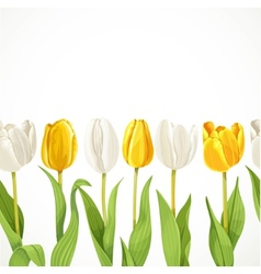 yellow and white flowers tulips seamless vector image