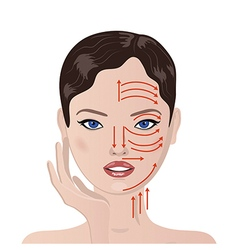 face massage vector image