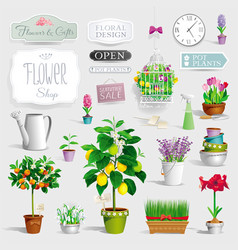 set of the pot plants and garden tools vector image vector image