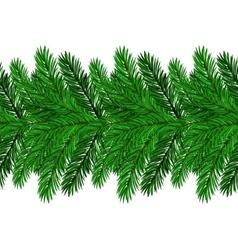 Fir Green Branches vector image