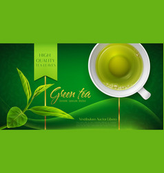 3d with a mug of green tea and vector image vector image