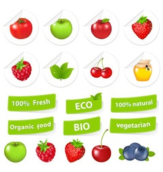 eco set organic food vector image