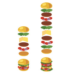 a hamburger ingredients of vector image