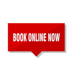 Book online now red tag vector