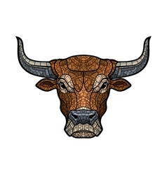 Bull head isolated vector