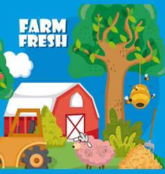 farm fresh cartoons vector image