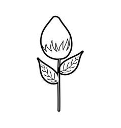 Flower garden growth bulb natural image vector