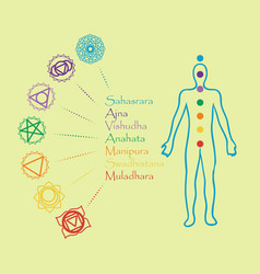 Human body with chakra meditationcontour vector