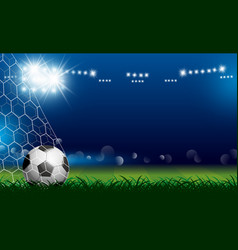 Soccer ball in goal on grass with spotlight vector