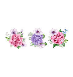 set of flower bouquets apple tree flower vector image