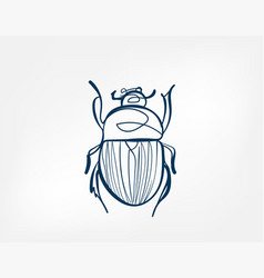 beetle insect art line isolated doodle vector image