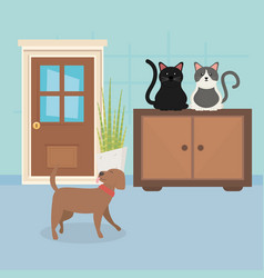 Dog and cats sitting in furniture room house pet vector