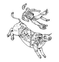 enraged bull attacks matador or bullfighter vector image