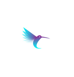 geometric blue hummingbird logo vector image