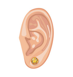 human ear and earring vector image
