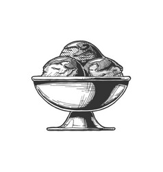 ice cream served in steel bowl vector image