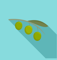 olives branch icon flat style vector image