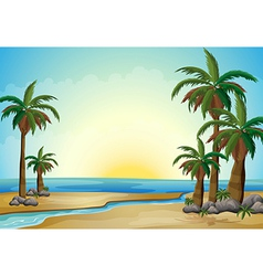 Palm trees at the beach vector