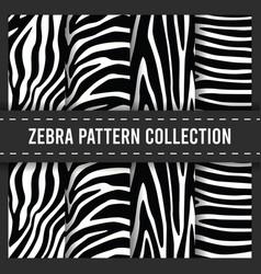 seamless pattern background zebra stripes print vector image