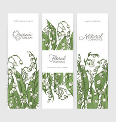 Set of vertical banner or label templates with vector