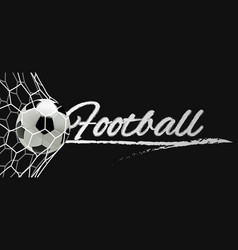 Soccer or football banner ball in the net vector