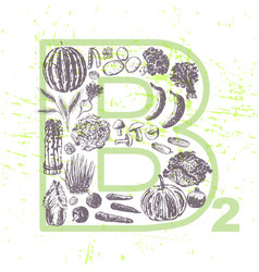 ink hand drawn fruits and vegetables vitamin b2 vector image